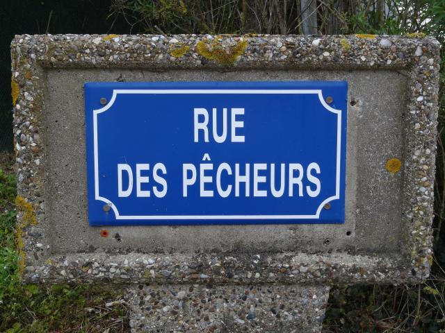 Elections de la photo de Juillet DSC06319